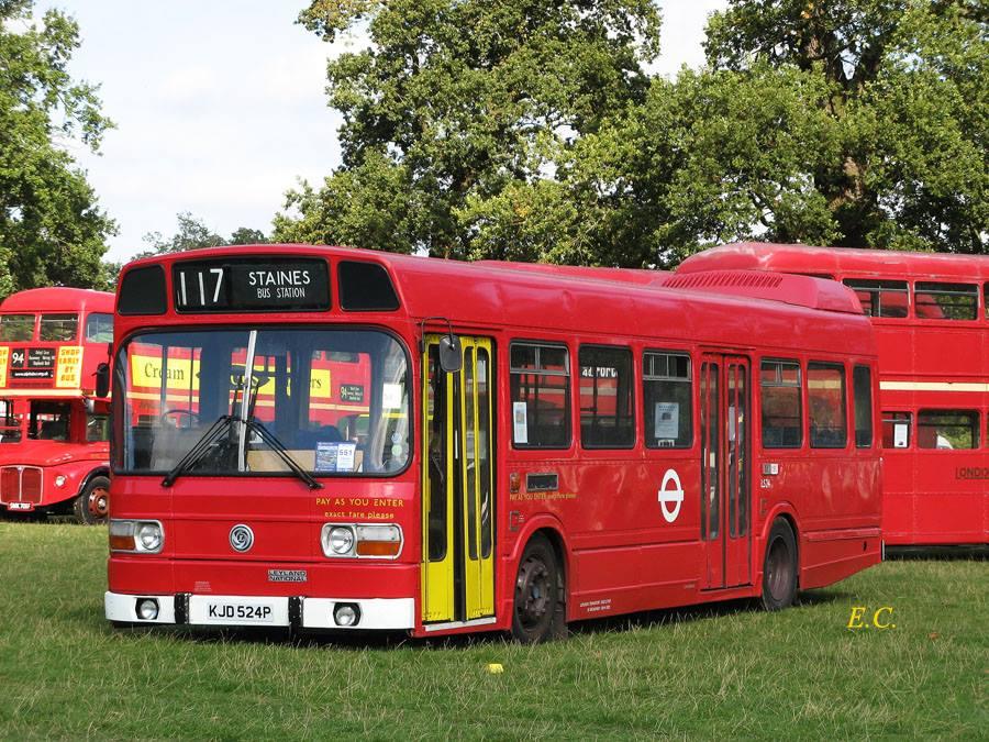 showbus-10