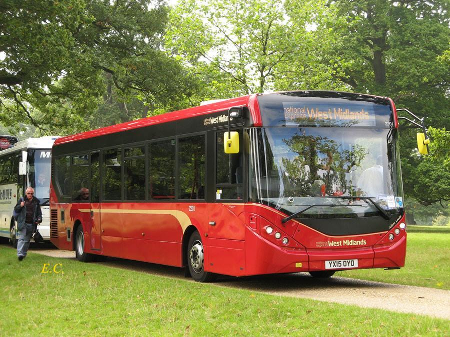 showbus-20
